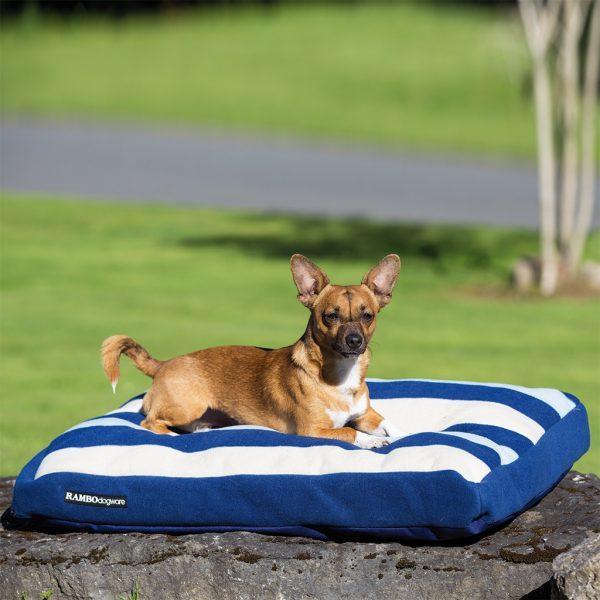 Cream Dog Bed