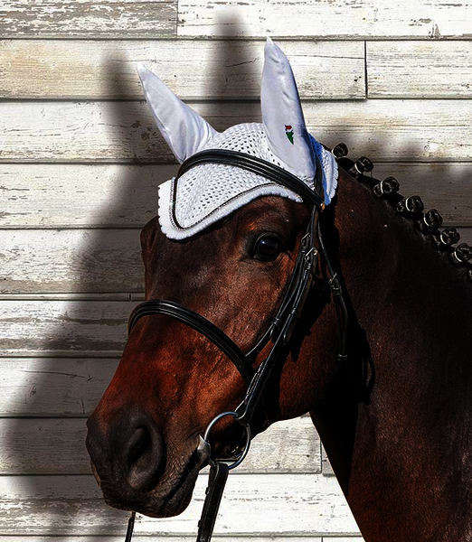 Equiline Earnet Rio