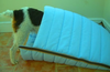 PolyPads® Insider© Pet Bed