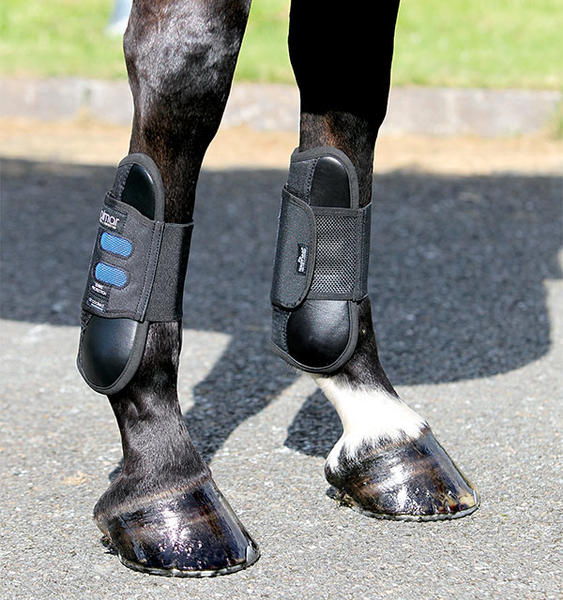 Dalmar SJ Open Front Tendon Boots